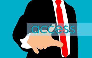 RoHS exemption Access to markets